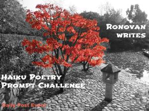 haiku-challenge-image1
